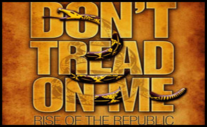 Don't Tread On Me: Rise of the Republic
